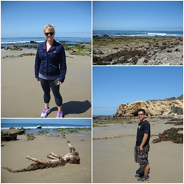 crystal cove collage2.jpg